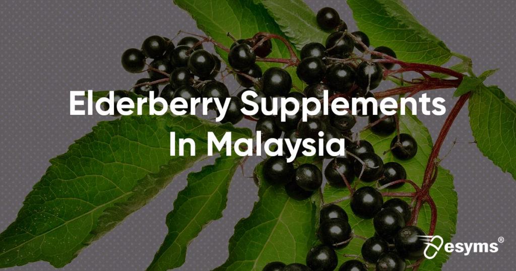 elderberry review malaysia